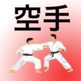 Karate Fahne
